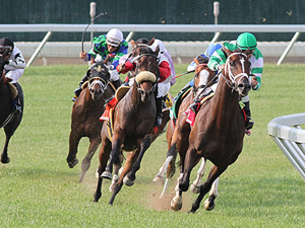 Turbo Compressor #1 (R) with Joe Bravo riding cruised to victory in the $500,000 Grade 1 United Nations Stakes at Monmouth Park in Oceanport, New Jersey on Saturday July 7, 2012. Photo By Ryan Denver/EQUI-PHOTO